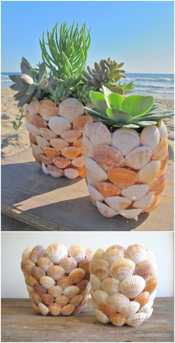 Beautiful Seascape Succulent Planter