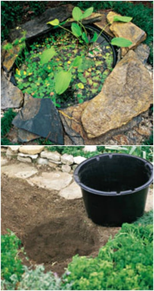 DIY Sunken Mini Pond