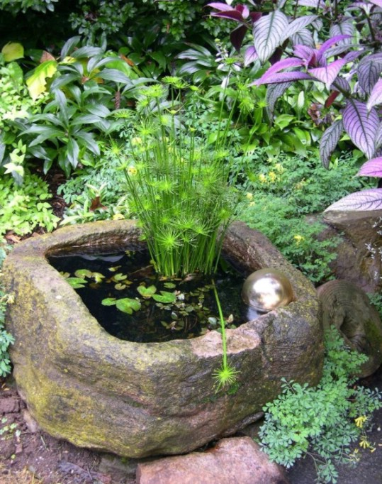 DIY Water Garden Inside A Rock