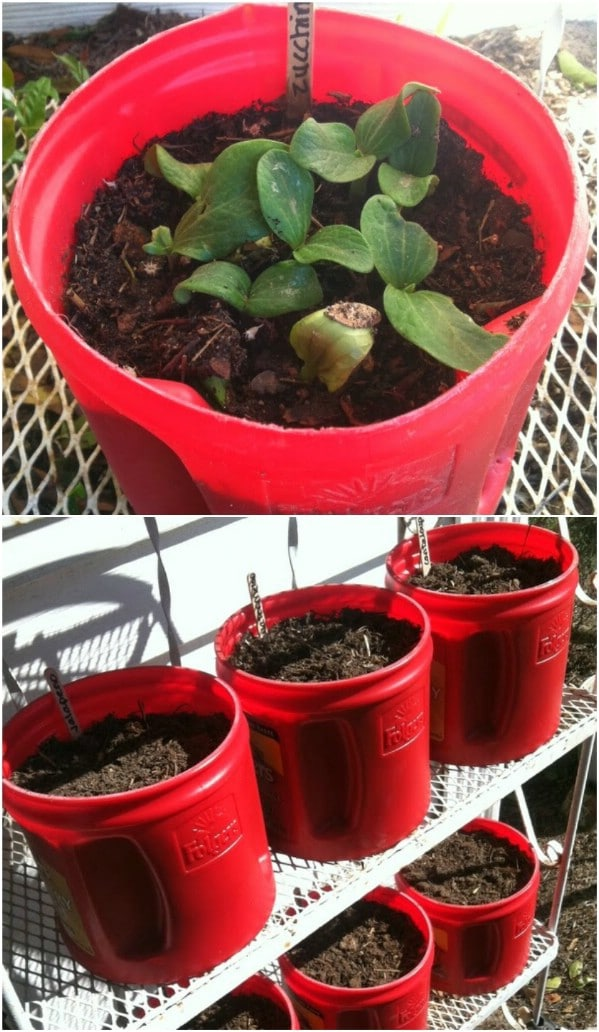 Frugal Coffee Canister Seed Starters