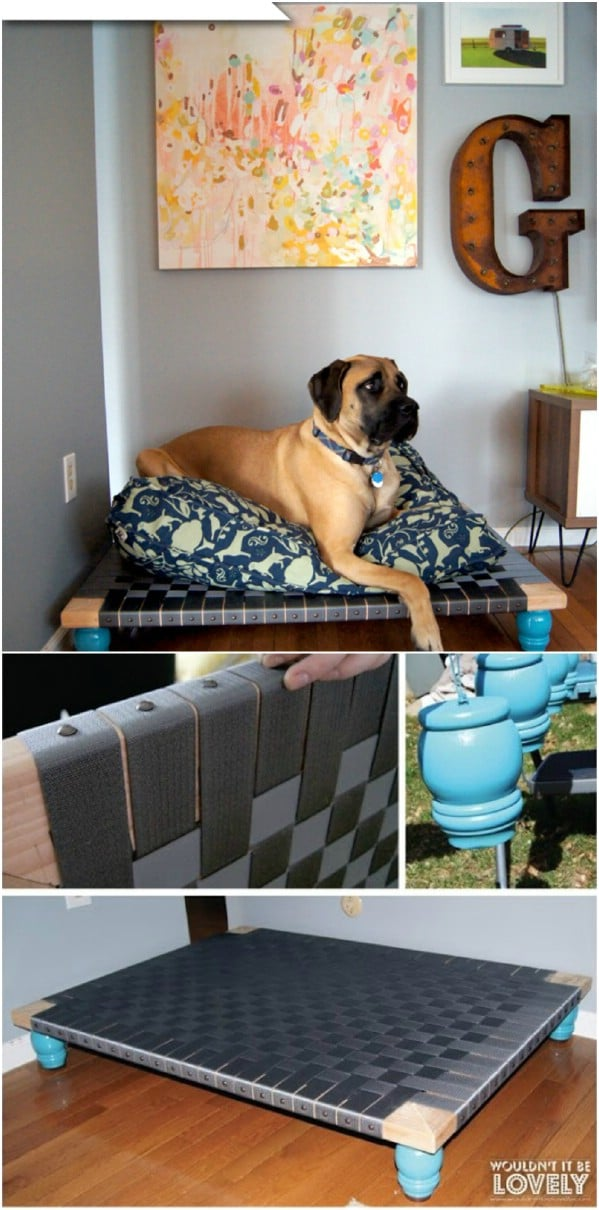 Raised Bed For Large Breeds