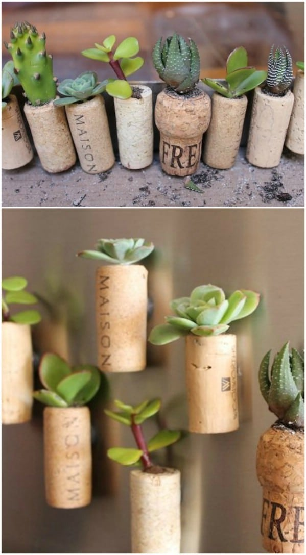 Upcycled Wine Cork Succulent Planters