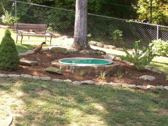 Repurposed Swimming Pool Duck Pond