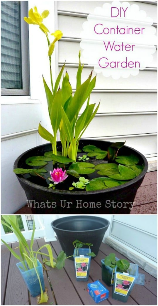 Easy DIY Container Garden
