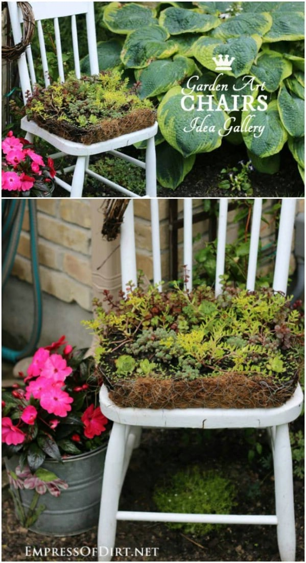 Succulent Garden Chair Planter