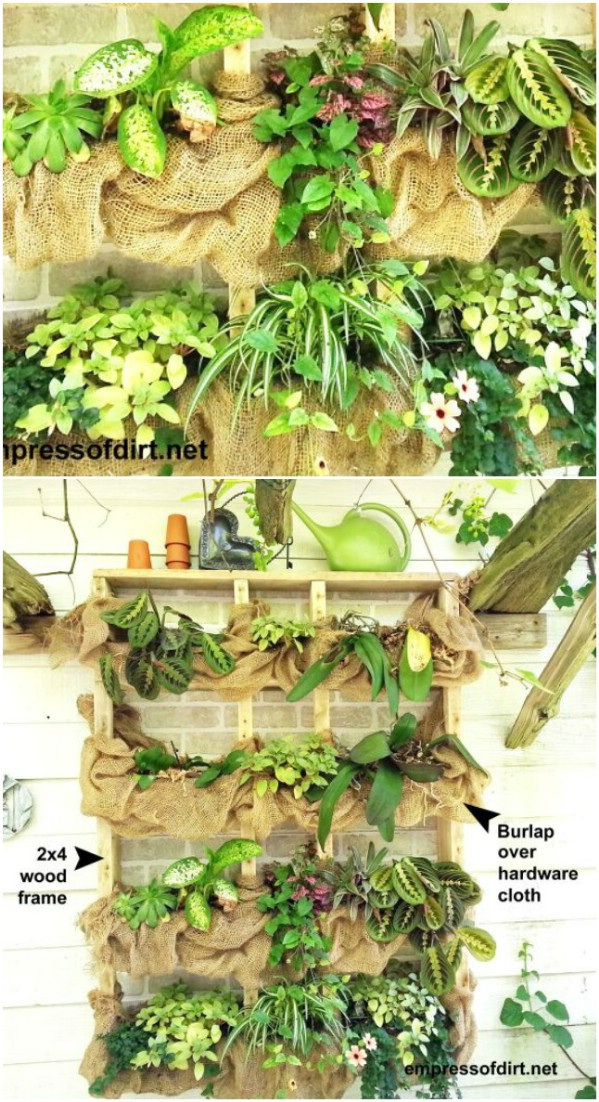 Outdoor Succulent Plant Shelf