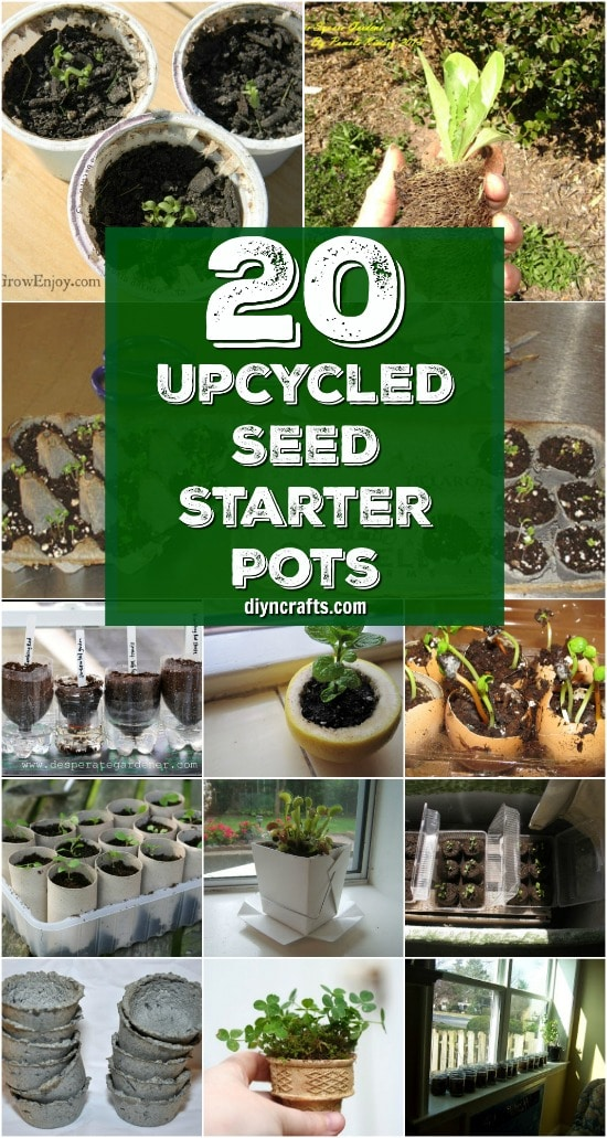 20 Upcycled Seed Starter Pots You Can Easily Make At Home {Curated and Published by DIYnCrafts.com}