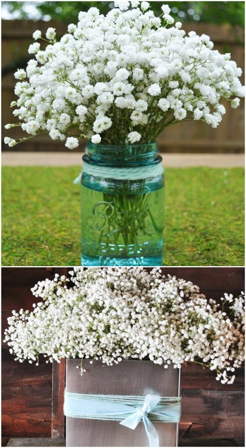 Summery Baby's Breath Flower Arrangement