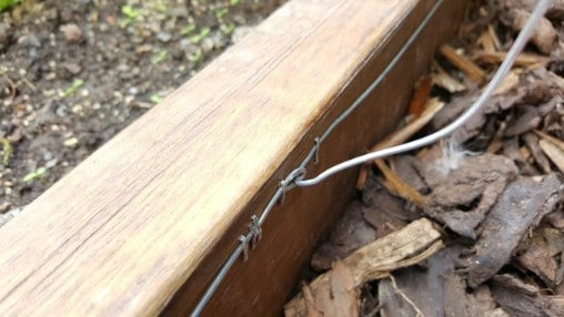 How to Build a Humane Slug and Snail Repelling Fence
