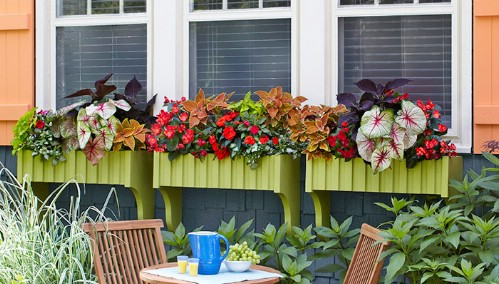 Easy DIY Window Boxes