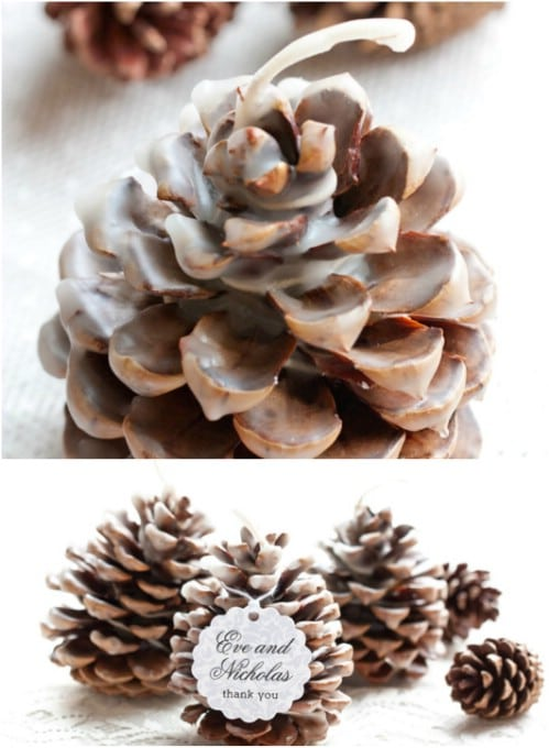 Pinecone Favors/Décor