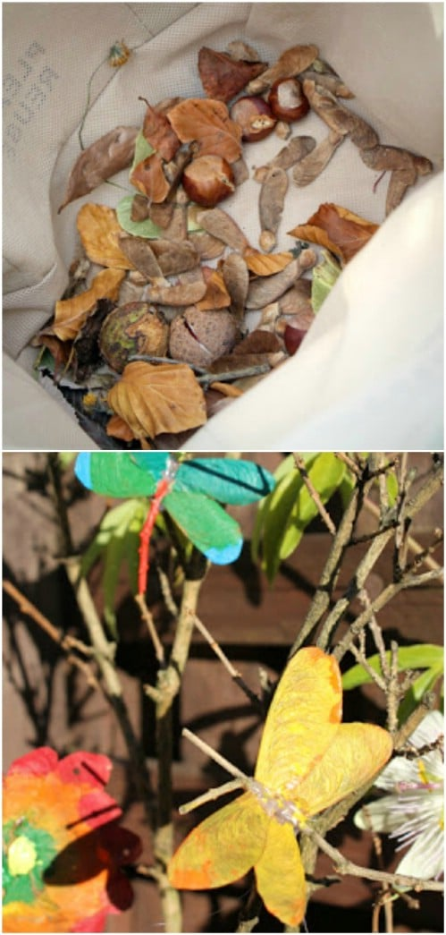 DIY Maple Seed And Twig Dragonfly