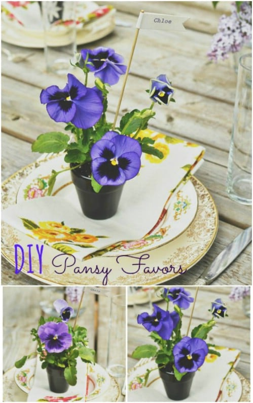 DIY Mini Pansy Favors