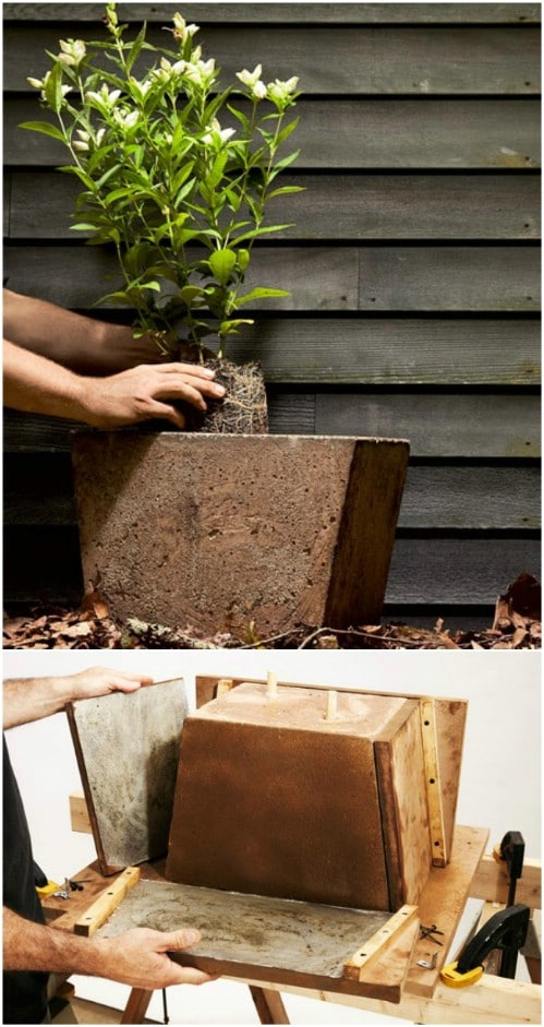 DIY Large Concrete Garden Planter