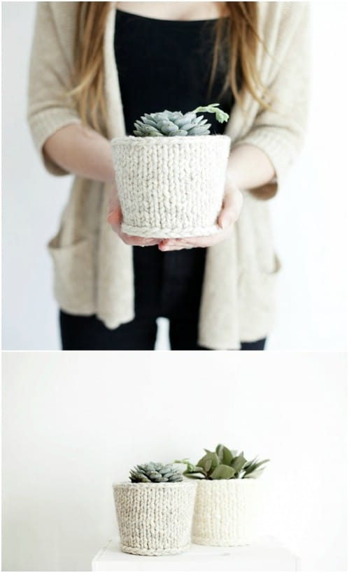 Quick And Easy Knit Plant Cover