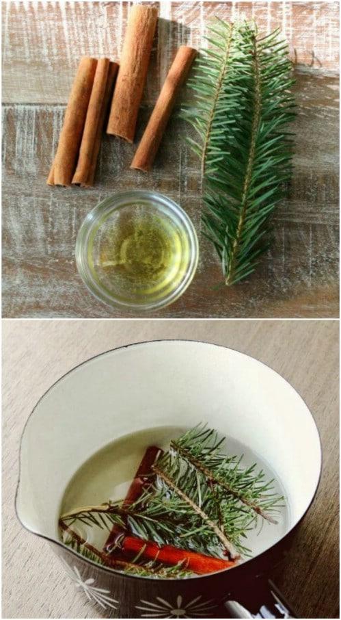 Simmering Evergreen Potpourri