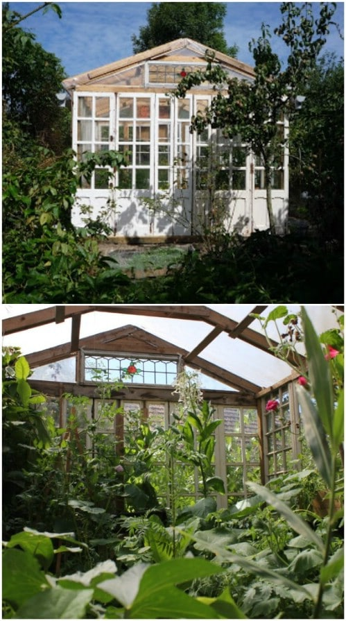 Easy $5 DIY Pallet Greenhouse