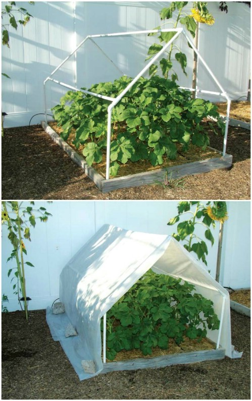 Easy A Frame Mini Greenhouse