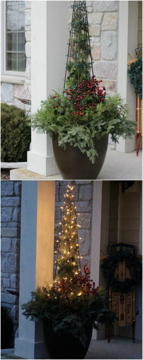 Cranberry, Evergreen and Lights Planter