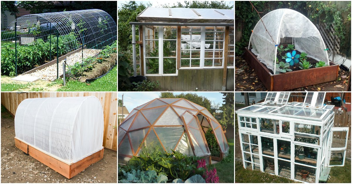 20 Free DIY Greenhouse Plans You'll Want To Make Right Away