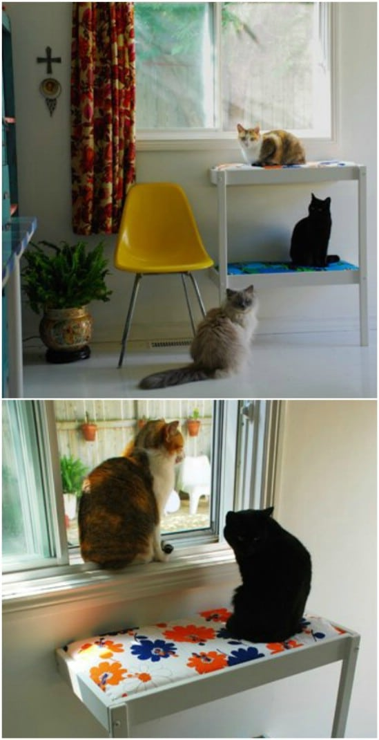 DIY Cat Perch