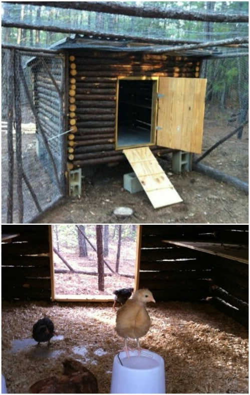 Rustic Log Cabin Chicken Coop