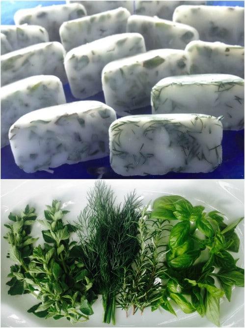 Freeze Fresh Herbs In Coconut Oil