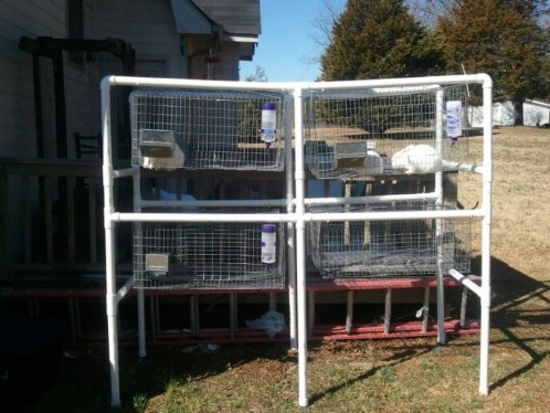 Easy DIY PVC Pipe Rabbit Hutch