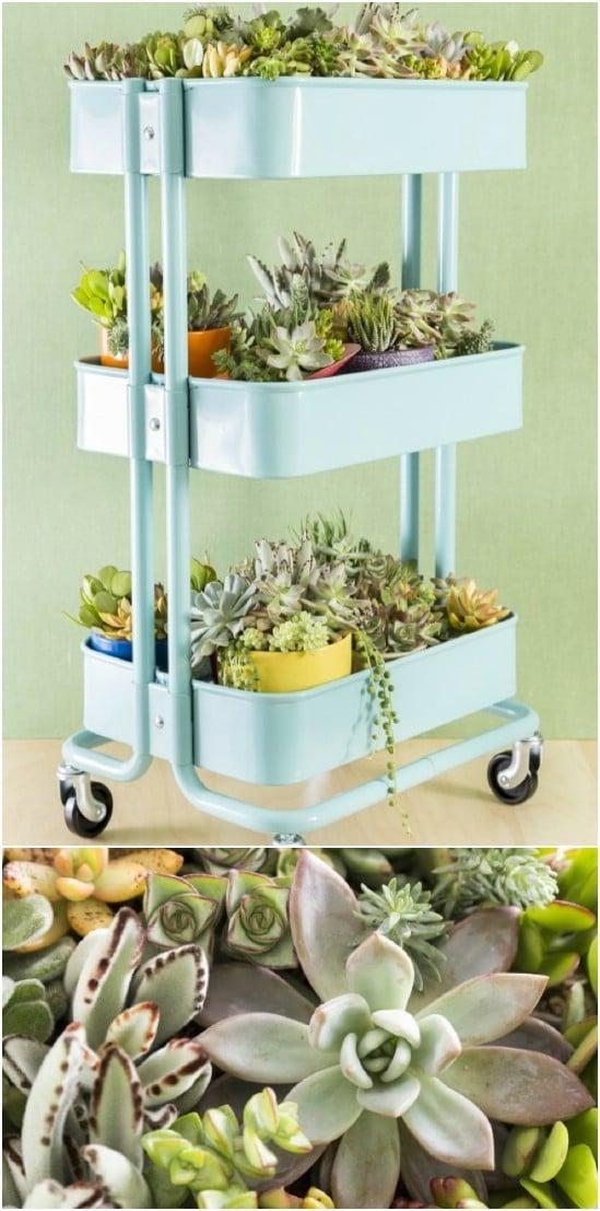 Repurposed Bar Cart Succulent Planter