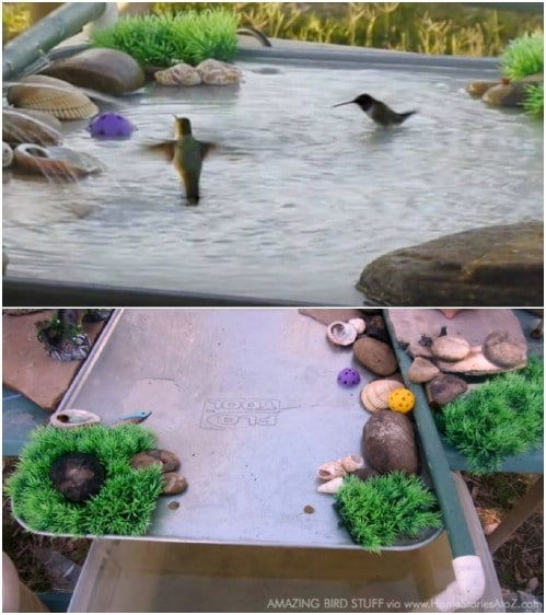 Repurposed Oil Pan Bird Bath