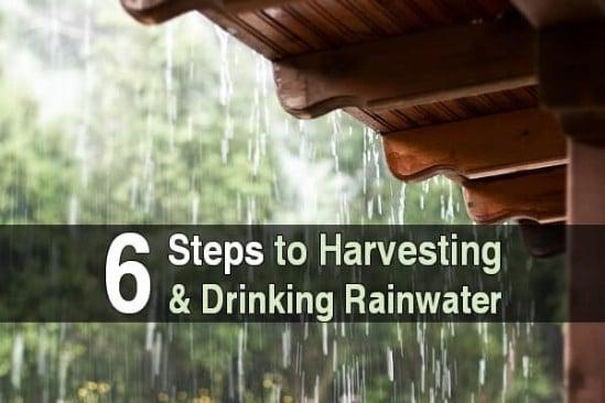 DIY Rainwater Harvester