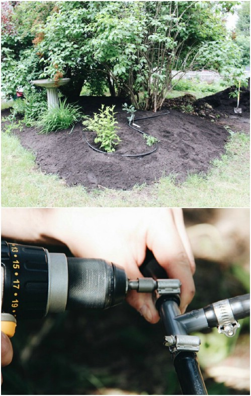 DIY Drip Line Irrigation System