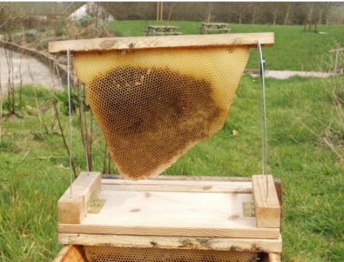 DIY Top Bar Beehive