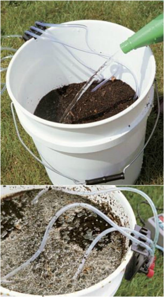 DIY Bucket Compost Tea Brewer