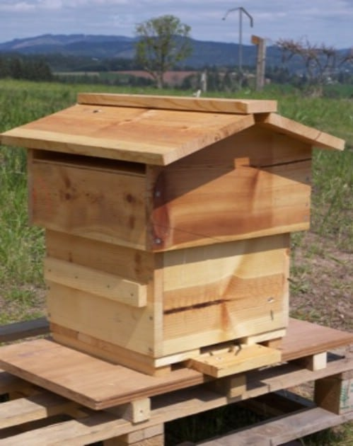 Quick And Easy DIY Warre Beehive