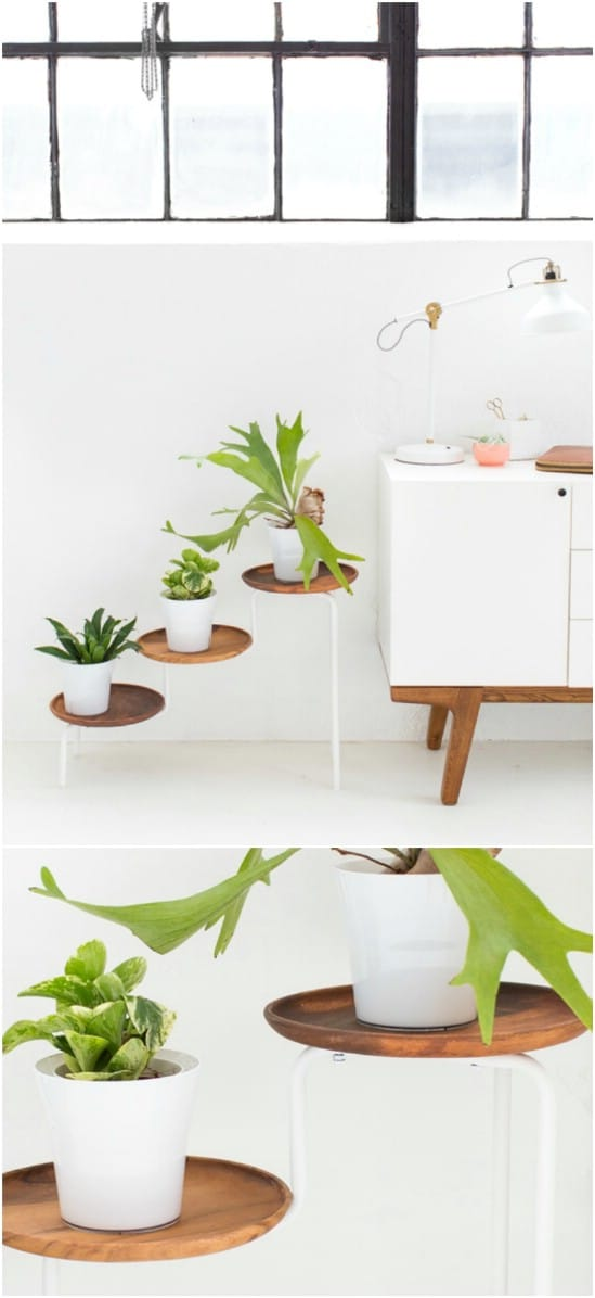 DIY Acacia Wooden Plant Stand
