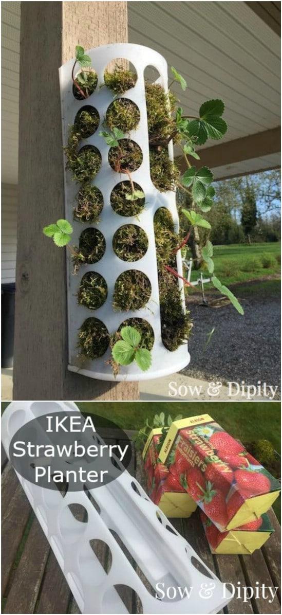 Repurposed IKEA Shopping Bag Holder Strawberry Planter