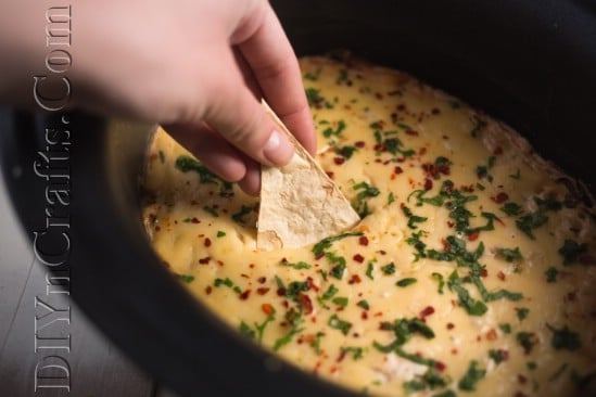 Cooked cheese dip: