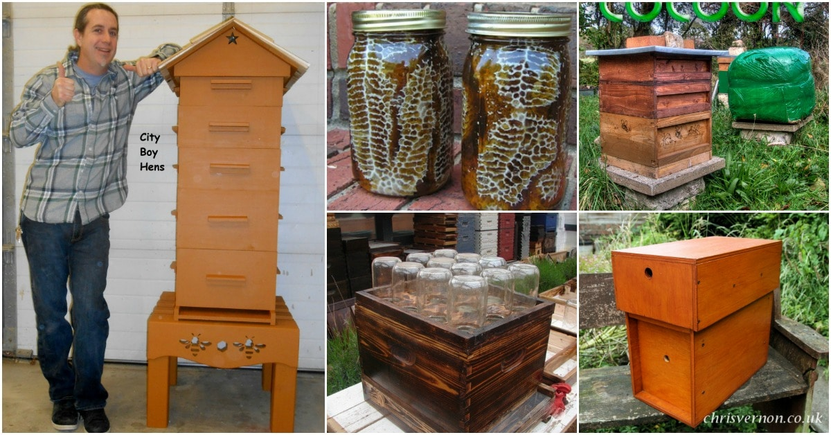 10 Diy Beehives You Can Add To Your Backyard Today Diy Crafts