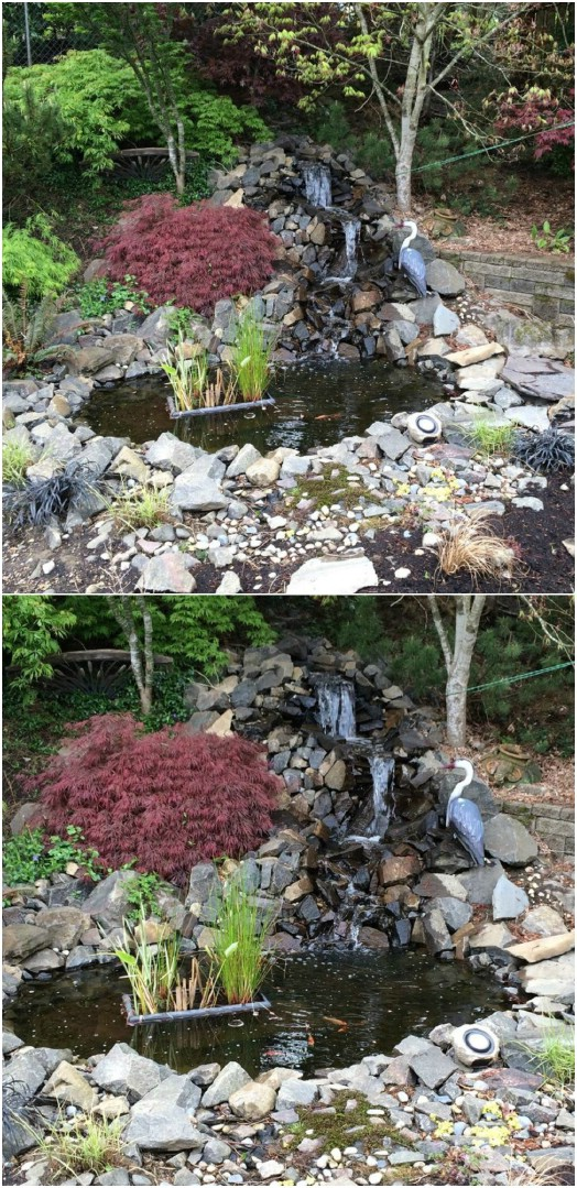 DIY Backyard Pond And Waterfall
