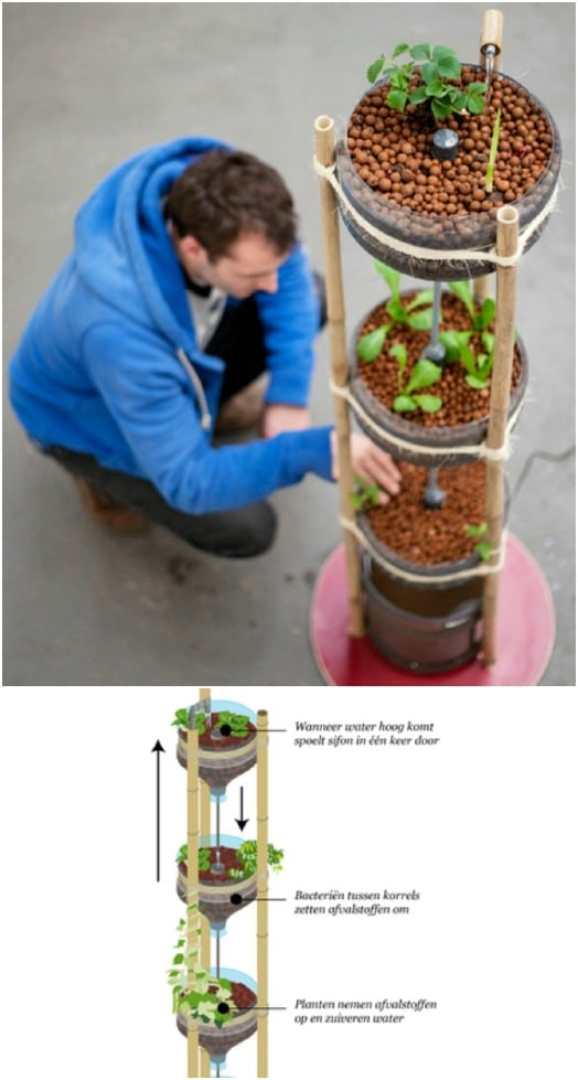 DIY Mini Aquaponics Tower Garden