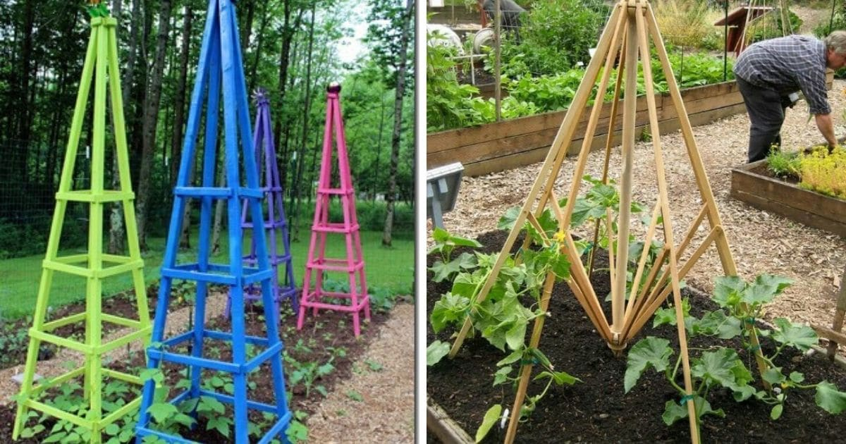 15 Diy Plant Supports And Cages You Need In Your Summer Garden Diy Crafts