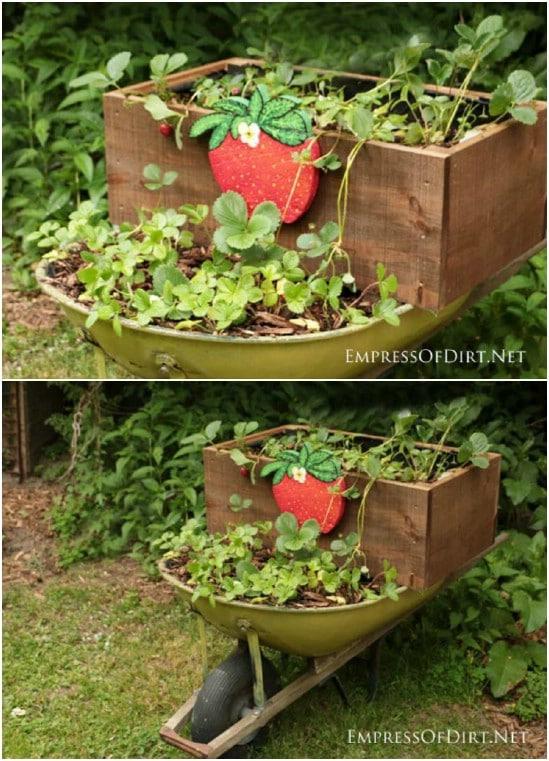DIY Rolling Strawberry Planter