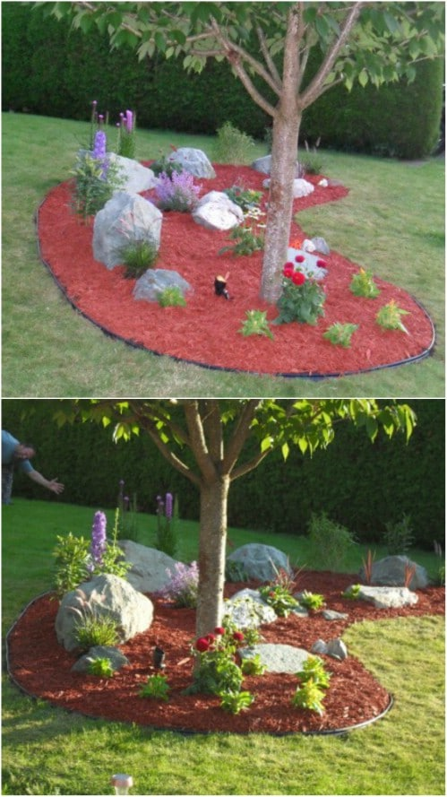 DIY Professionally Landscaped Rock Garden