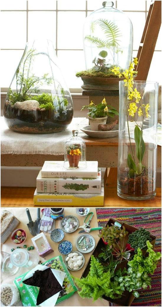 DIY Terrarium Fairy Garden