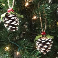 6 Hand Made Pinecone Ornaments Frosted