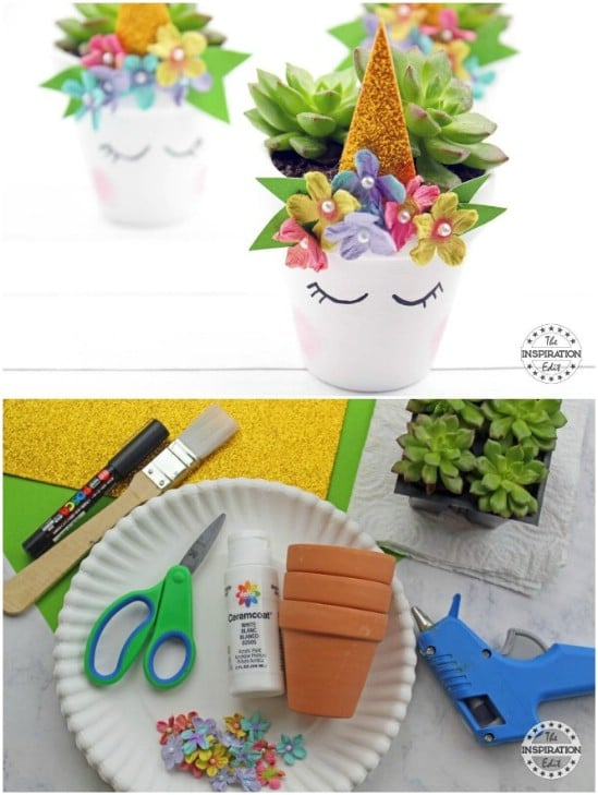 Adorable DIY Unicorn Succulents