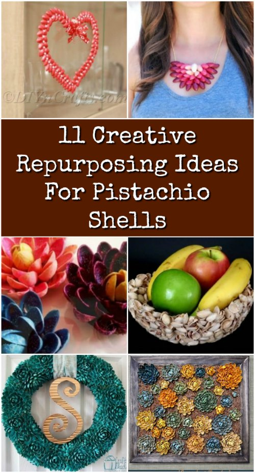 11 Creative Repurposing Ideas For Pistachio Shells Diy Crafts