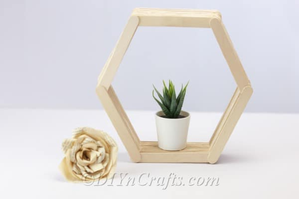 Finished hexagon shelf with plant