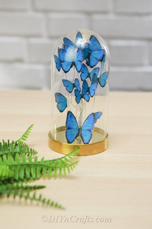 Jar with blue butterflies inside